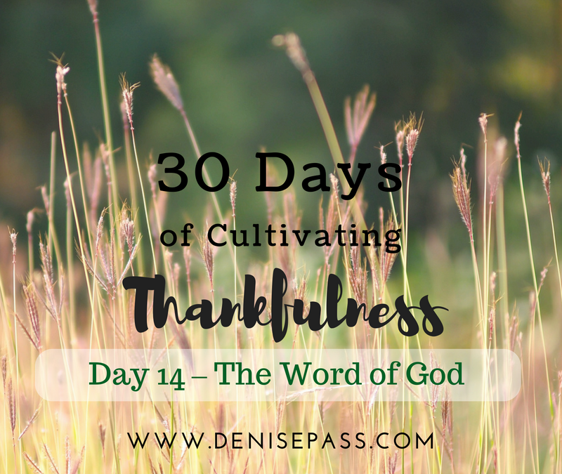 30 Days of Cultivating Thankfulness   Day 14 – The Word of God