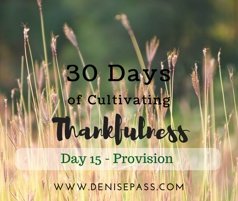 30 Days of Cultivating Thankfulness    Day 15 – Provision