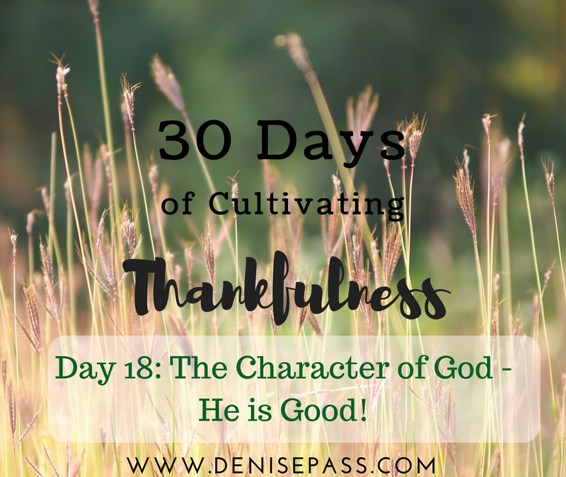 30 Days of Cultivating Thankfulness   Day 18 –Character of God – He is Good!