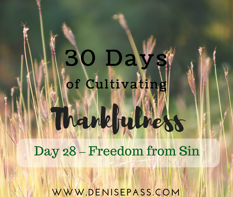 30 Days of Cultivating Thankfulness:   Day 28 – Freedom from Sin