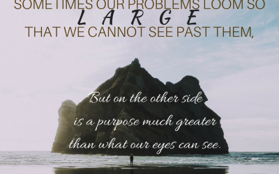 The Purpose of Problems