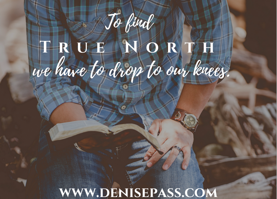 True North: Finding Right-Side Up in a Messed-Up World