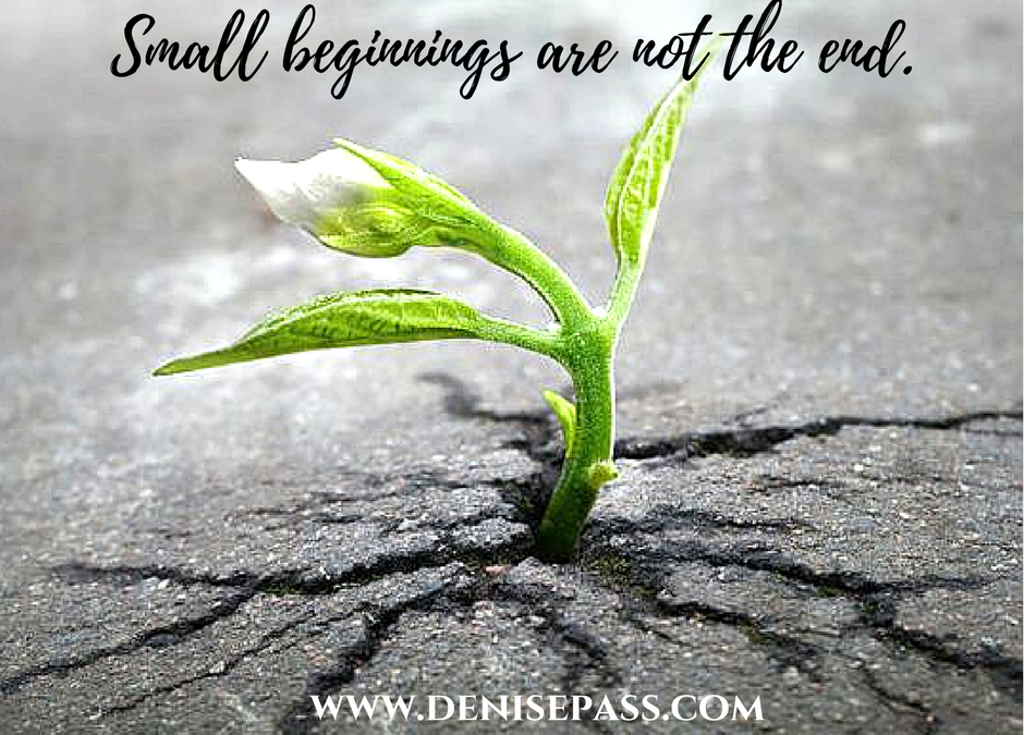 Small Beginnings are Not the End