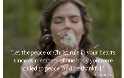 Making Room for Gratitude: Day 16