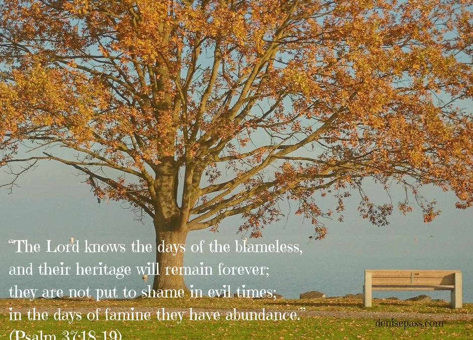 Thankful No Longer Shameful ~ 30 Days of Gratitude: Day 17