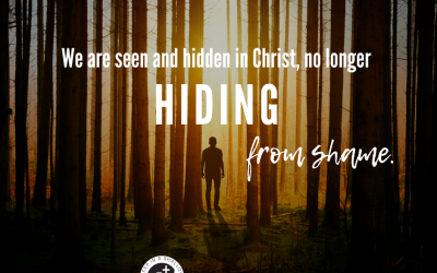 No More Hiding – Seen and Found
