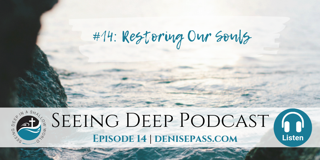 SD#14: Restoring our Souls