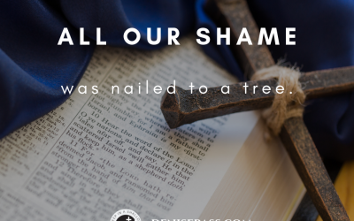 All Our Shame Was Nailed to a Tree