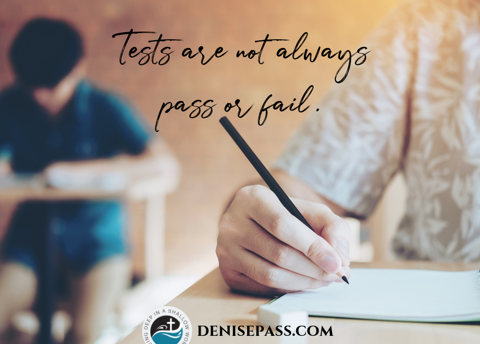 The Purpose of Tests
