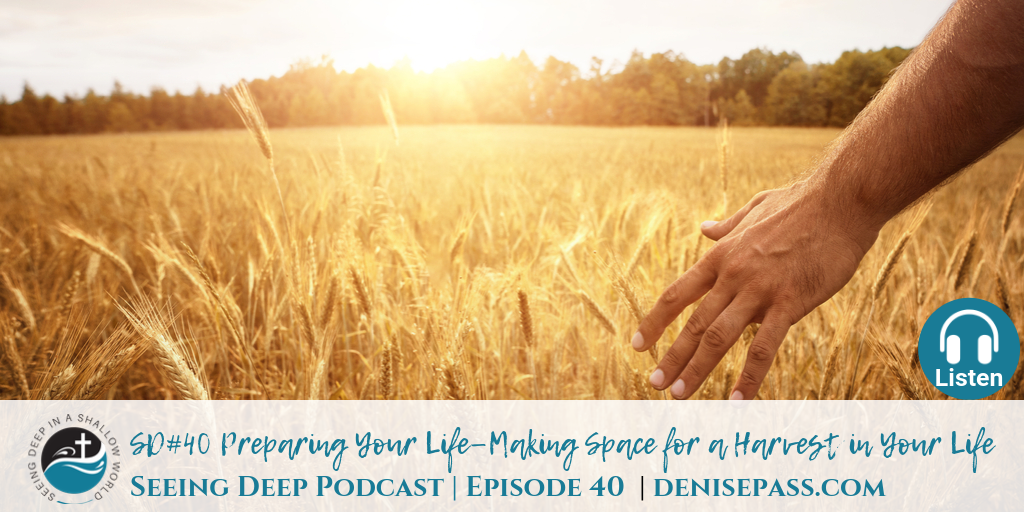 SD#40 Preparing Your Life – Making Space for a Harvest in Your Life