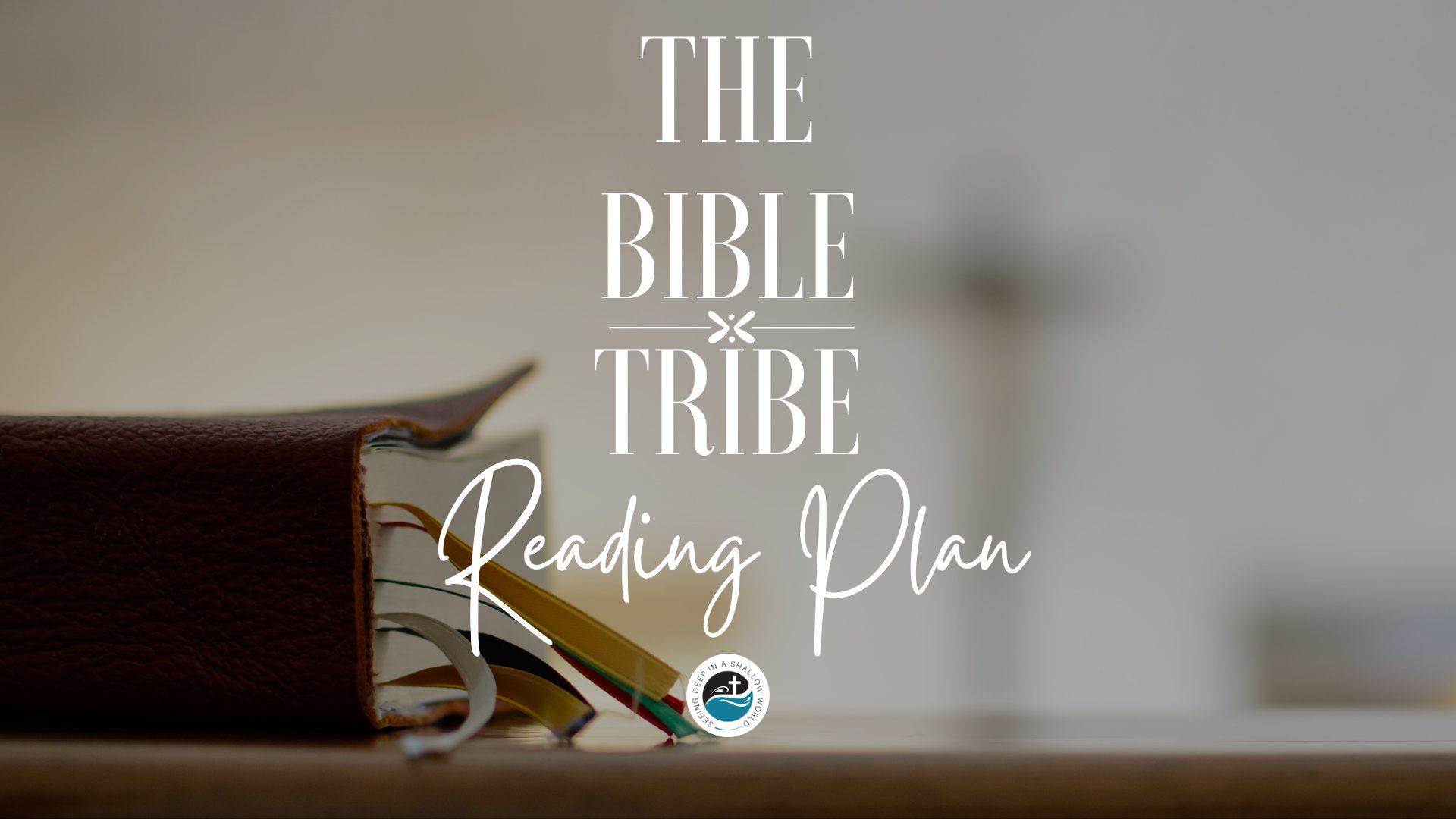 Bible tribe reading plan
