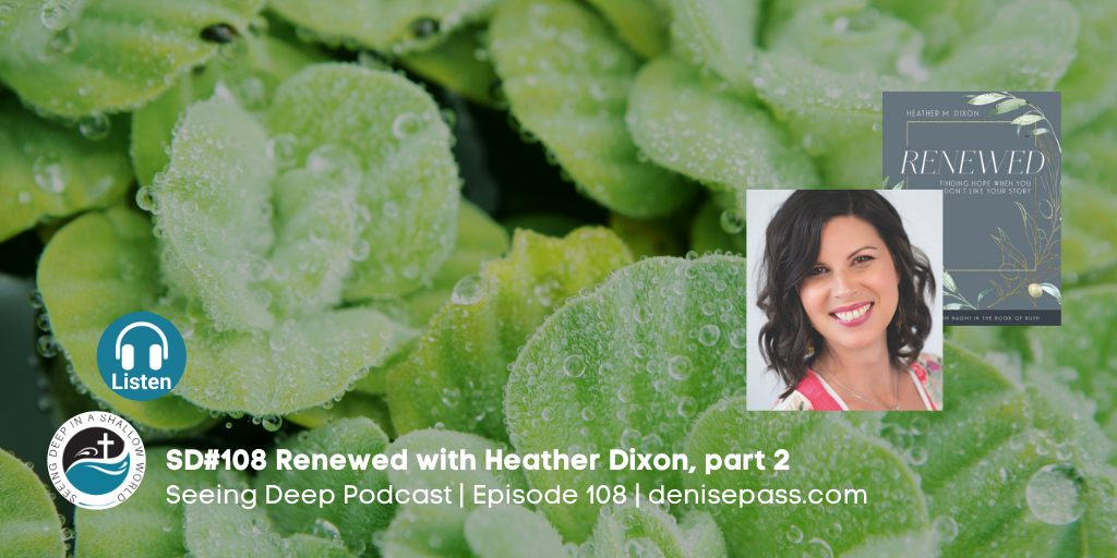 SD#108 Finding Renewed Hope with Heather Dixon, Part 2