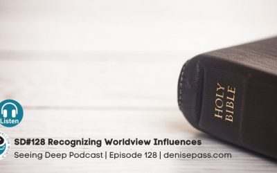 SD #128 Recognizing Worldview Influences